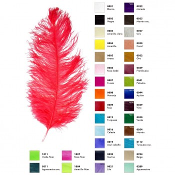 PLUMAS DE AVESTRUZ MALE WINGS COLORES 60cm